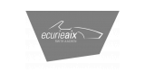 Logo: Ecurie Aix RWTH Aachen