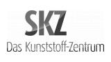 Logo: SKZ-KFE gGmbH